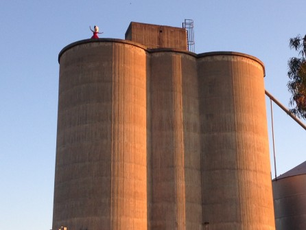 Dookie silos